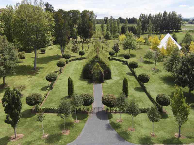 A Man Uses Only Trees To Build A Beautiful Church And It Is Just Stunning